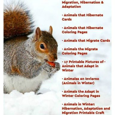 Animals in Winter Awesome Printable Bundle #1