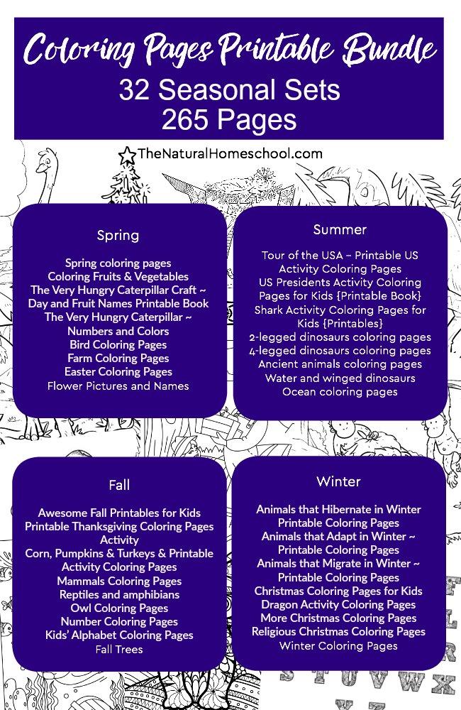 Printable Coloring Pages for Kids ~ MEGA Bundle of 32 Sets ~ 265 ...