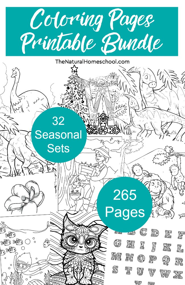 Printable Coloring Pages for Kids ~ MEGA Bundle of 32 Sets ~ 265 Pages