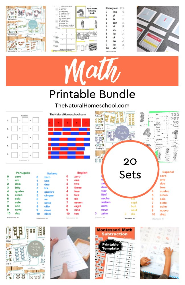 Montessori Math Subtraction Facts Presentation And Printable The