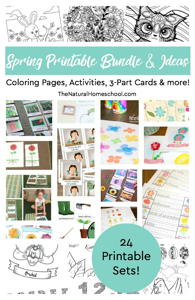 - 24 Spring Printable Bundle And 130+ Spring Activity Ideas - The Natural  Homeschool Shop