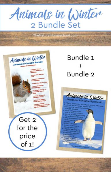Animals in Winter Bundles #1 & #2 (Hibernation, Migration, Adaptation)