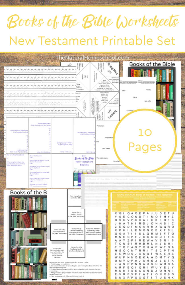 8 Fun Printable New Testament Books of the Bible Worksheets - The