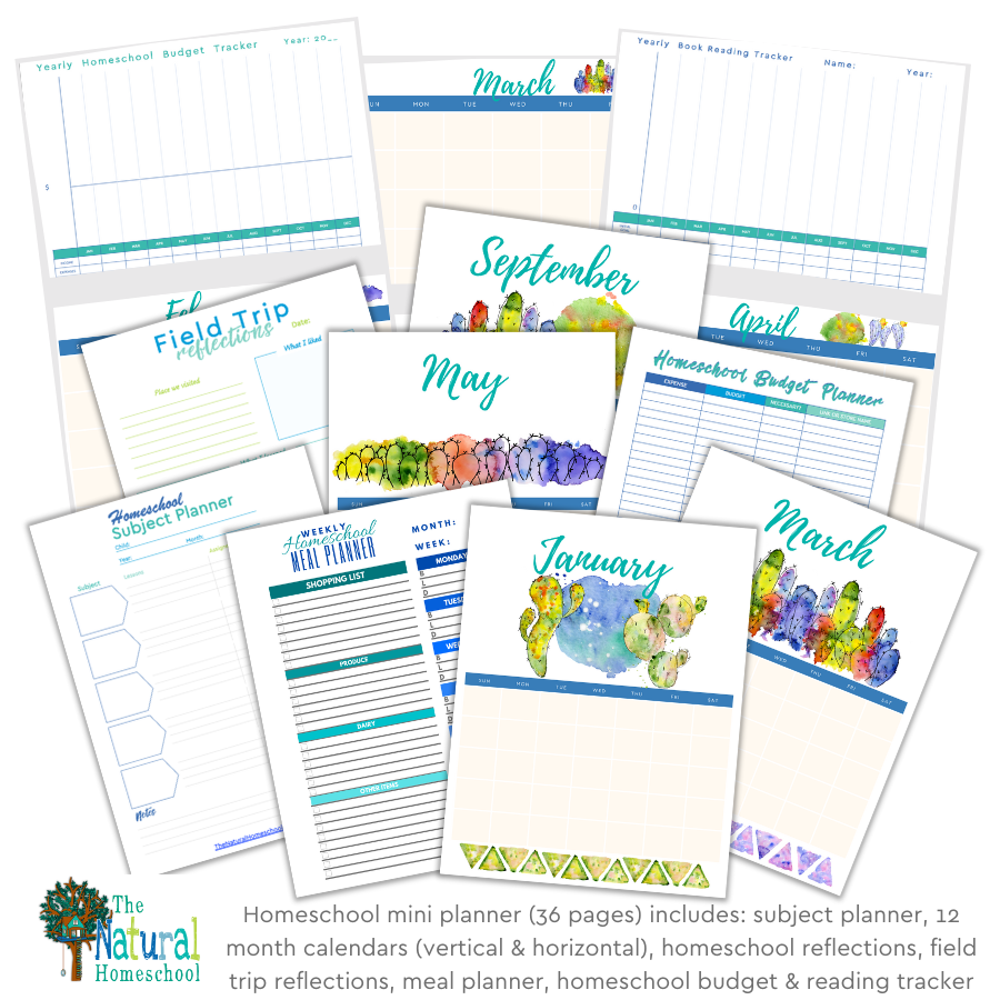 Are you looking for a homeschool planner that will get you started on your homeschool year right? If so, then come and take a look at this great homeschool mini planner.