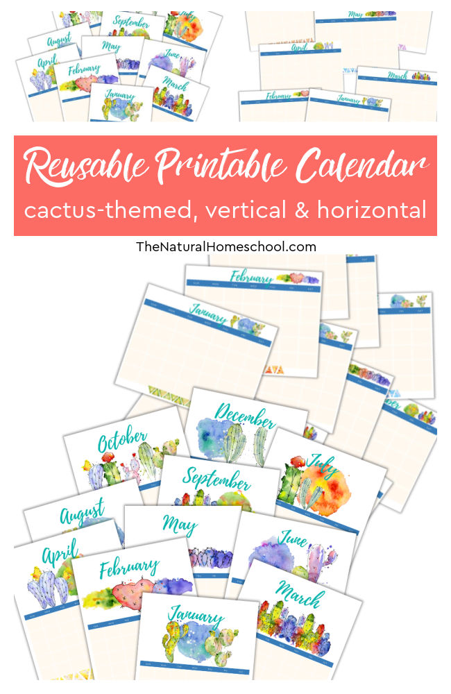 Have you been looking for a beautiful homeschool vertical calendar that will get you started on your homeschool year right? If so, then come and take a look at these 2 great homeschool 12-month calendars.