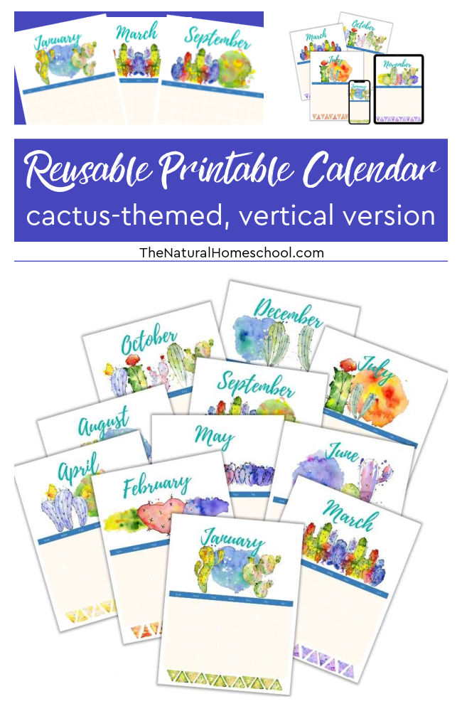 Have you been looking for a beautiful homeschool vertical calendar that will get you started on your homeschool year right? If so, then come and take a look at this great homeschool 12-month planner.